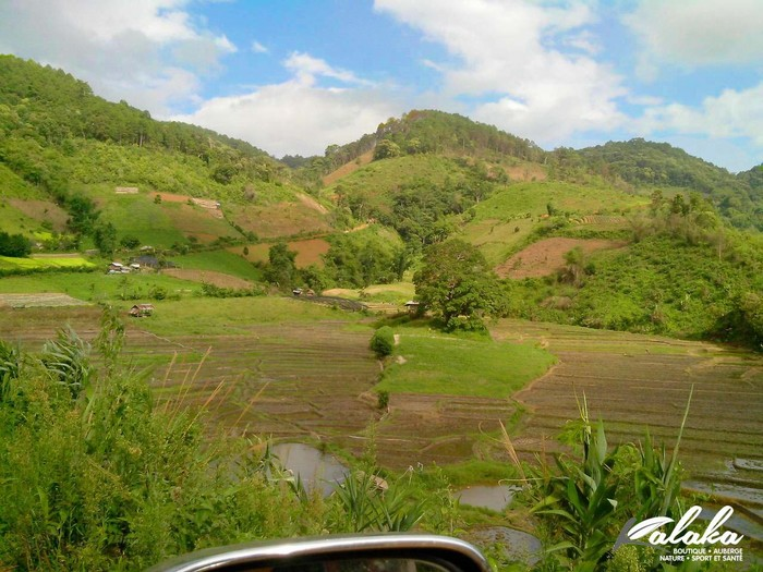 Trek Chiang Mai 1