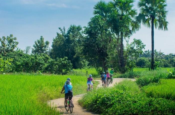 Velo Chiang Mai
